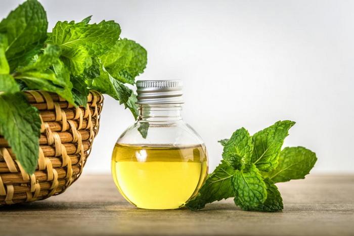 Эфирное масло мяты от целлюлита/Блог обычной женщины