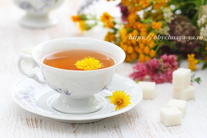Cup of herbal tea and flowers in summertime